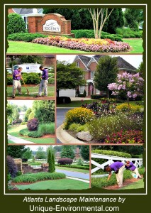 Atlanta Landscape Maintenance