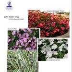 Spring 2014 Landscape Designer Color Combinations: 1